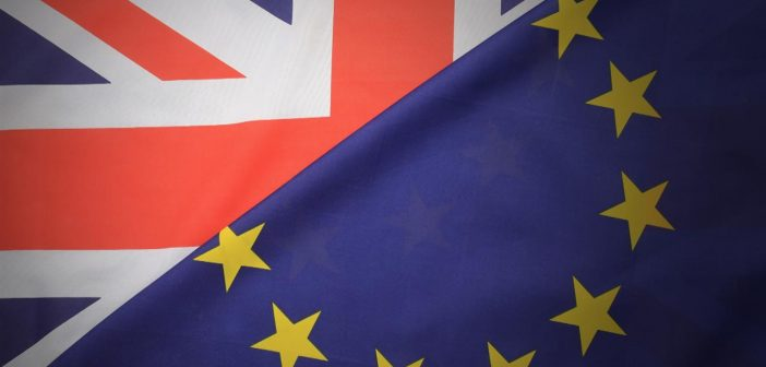 Brighton leader calls for right of EU nationals to remain in UK